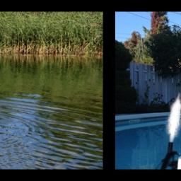 Inspection d'un cours d'eau… / Inspection of a waterway…